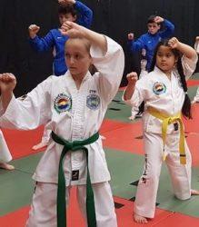 Taekwondo classes for kids near me.