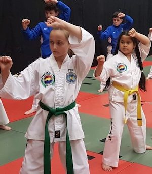 Taekwondo classes for kids near me.