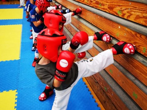 Online Taekwondo Training for Martial Arts
